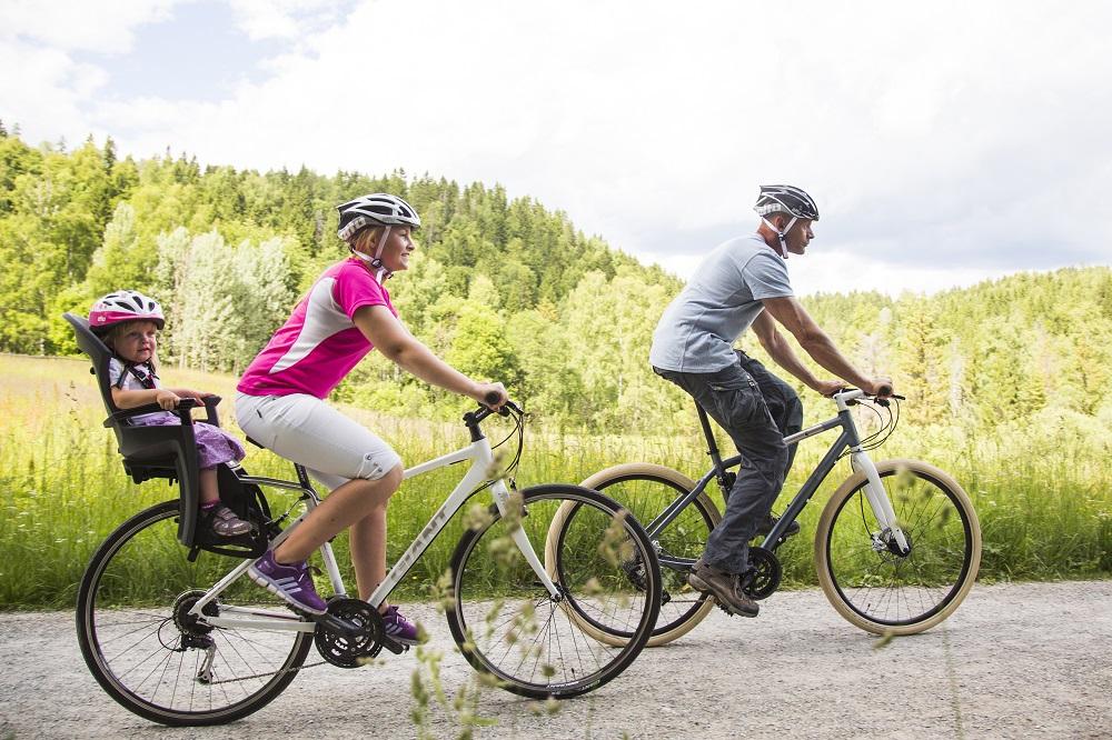 Hamax kerékpáros gyerekülés
